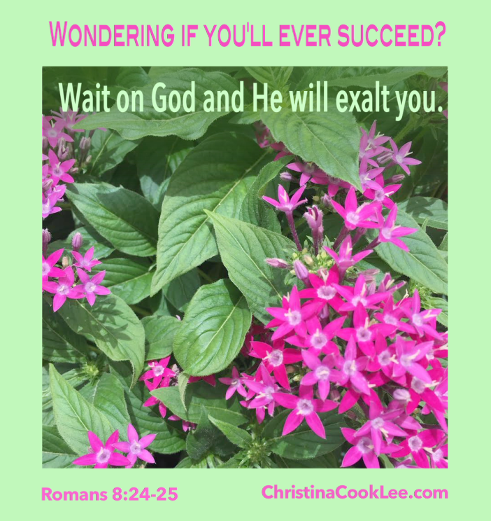 Wondering if you'll ever succeed? Wait on God and He will exalt you. Romans 8:24-25
