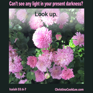 Can't see any light in your present darkness?