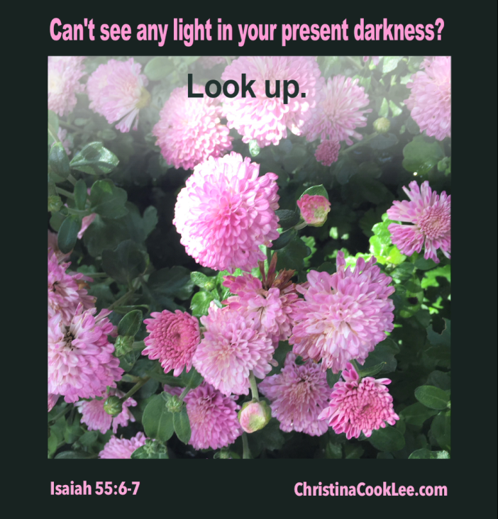 Cant see any light in your present darkness? Look up. Isaiah 55:6-7, christinacooklee.com