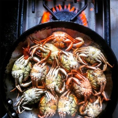 Vi-steger-krabber_ungernes-have_strandkrabbesuppe