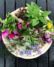 Madbloggerudfordringen_hjemmerøget-friskost-på-mælkebøtter-vild-salat-af-urter-og-spiselige-blomster_2