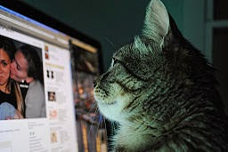 http://upload.wikimedia.org/wikipedia/commons/0/02/Facebook_engancha.jpg