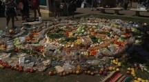Food waste fiasco - all of this was collected from dumpster diving!