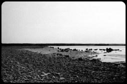 Beach at Fårö on the island Gotland-