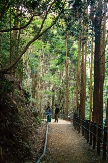 On the path to visit with the macaques of Arayashima in Kyoto.