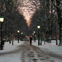 Kungsgatan at dawn
