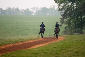 Watching the horses being trained in Newmarket on a foggy morning.