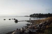 A walk on Lauttasaari beach in November.