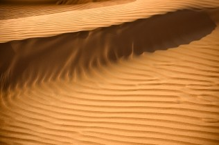 desert shadows_-6