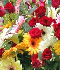 A photo of yellow, white and pink daisies and red roses