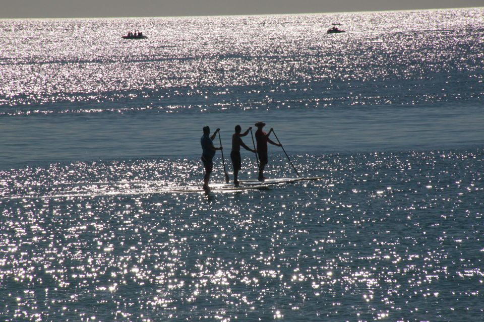 photo of three paddle surfers