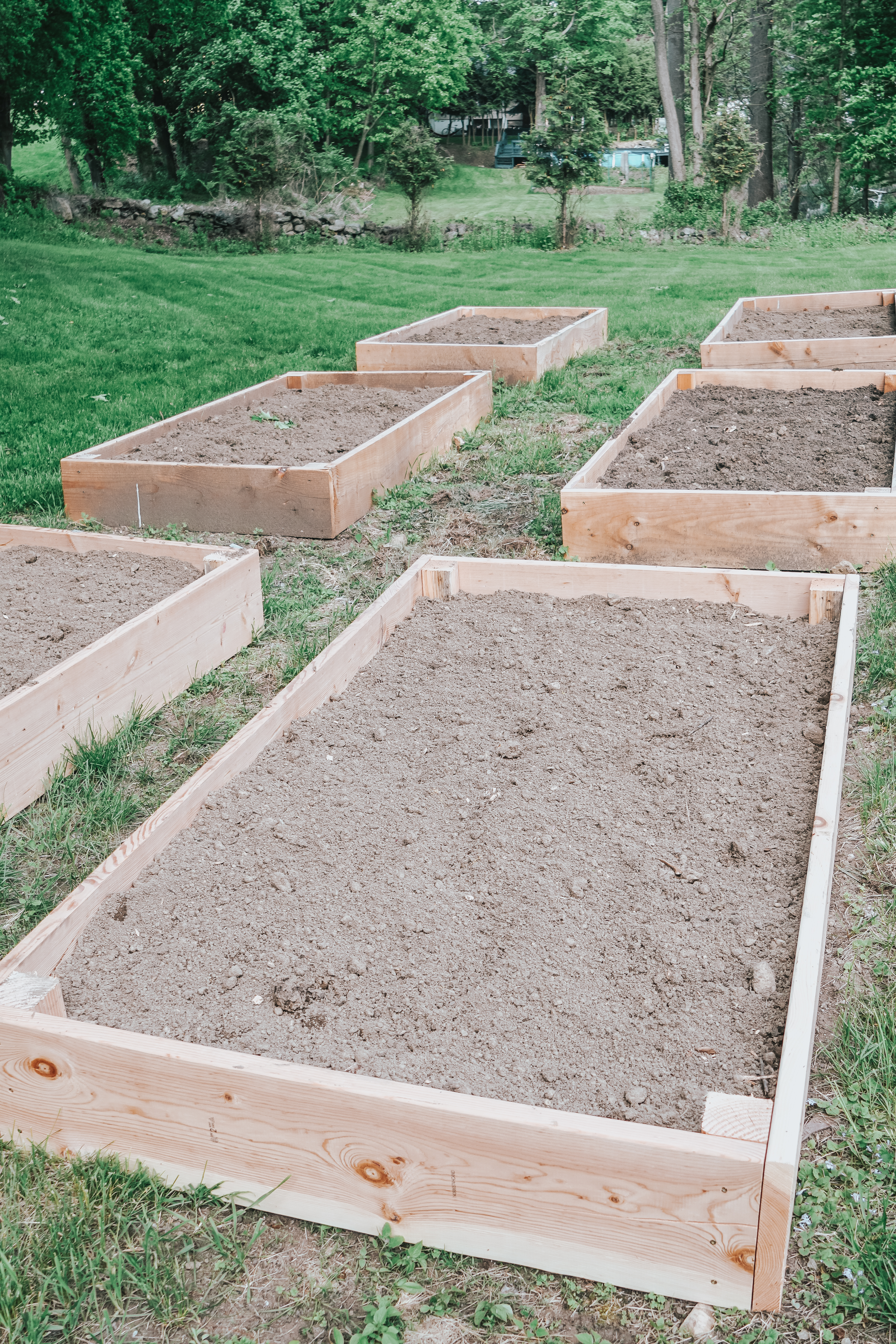NY-based home and garden blogger, Christine Covino, outlines an easy and inexpensive tutorial on how to build raised garden beds. Click here for more!