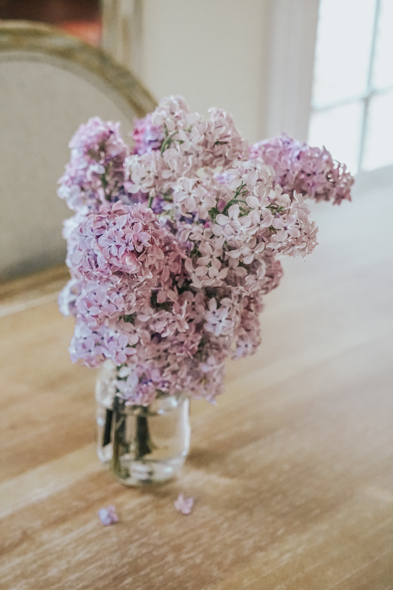 lilac on table- sharing lilac tips