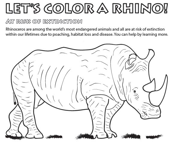 wildlife coloring pages # 5