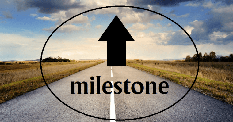 ROAD BLOCKS ARE SIMPLY MILESTONES TO SUCCESS