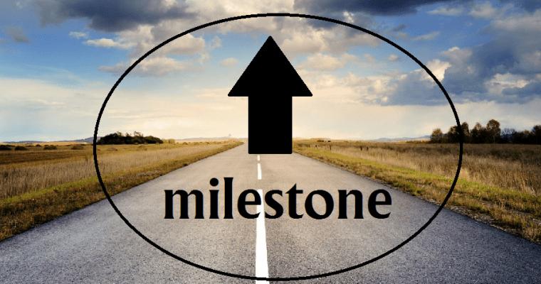 ROAD BLOCKS ARE SIMPLY MILESTONES TO SUCCESS