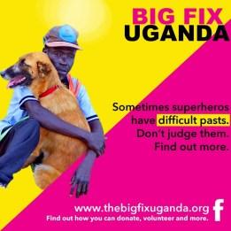 The Big Fix 1