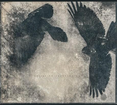 cyanotype sur papier, virage au thé noir, encaustique 21x23.2cm, 2017