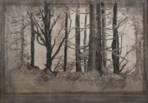 cyanotype sur papier, virage au thé, plume et marker, A4, 2017
