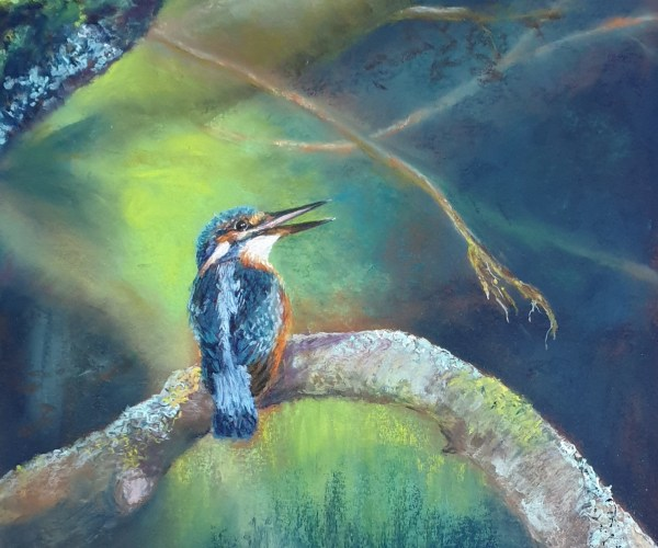 Dans les bras de Dame Nature – Martin Pêcheur