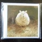 ls3-sheep-card-set