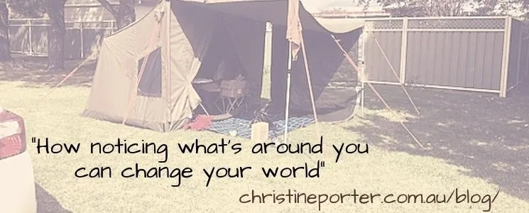 How noticing what's around you can change your world.