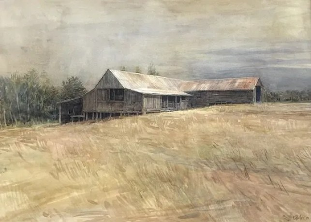 Watercolour painting by Christine Porter. Showing the exterior of a timber shearing shed. With slab walls in shadow and corrugated iron roof.