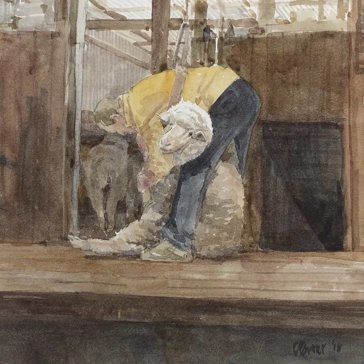Watercolour painting by Christine Porter showing a shearer in a yellow shirt and blue sheaers' pants shearing a large ram who's face is turned to us.