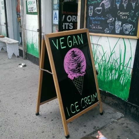 Vegan Ice Cream