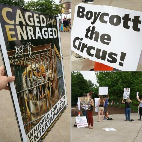 Circus Protest