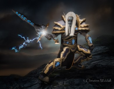 Dark Elf Paladin