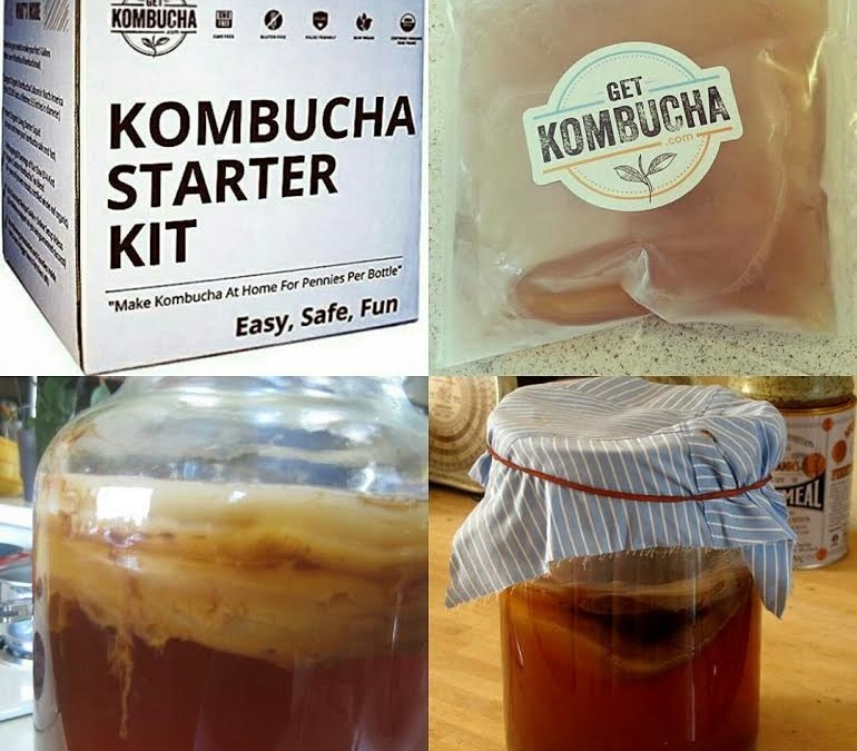 My Kombucha Starter Kit