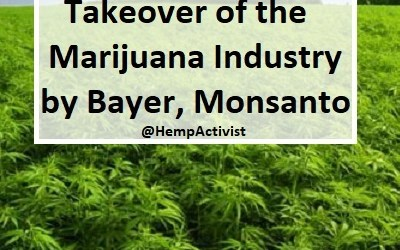 Monsanto & Bayer Collude to Take over the Cannabis Industry