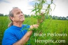Hemp Inc CEO, Bruce Perlowin