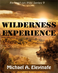 Wilderness Experience_Small