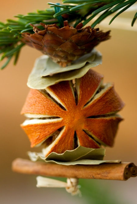 Christmas Tree Ornament Made From Dried Fruit Spices And Plants All About Christmas