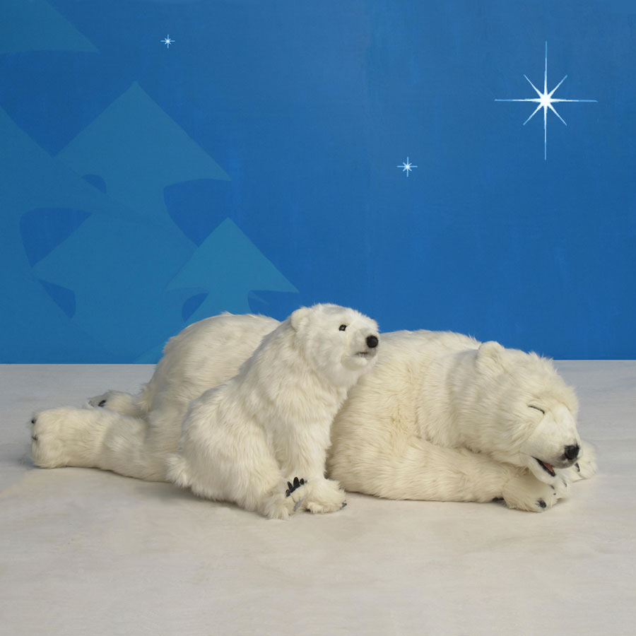 Christmas Two Bear Cubs