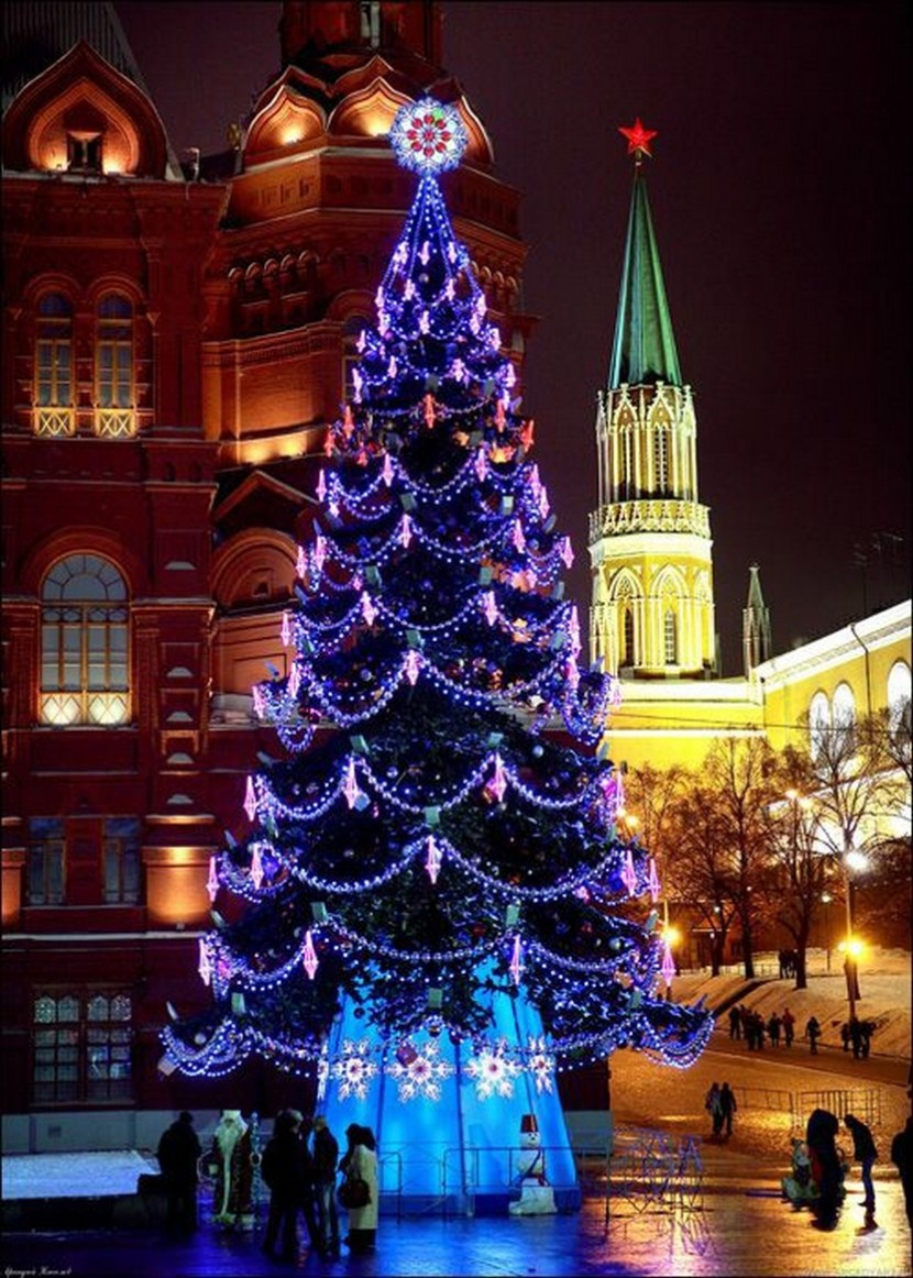 Breathtaking tree in Moscow