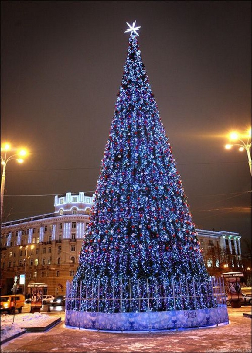 Christmas Tree in Moscow