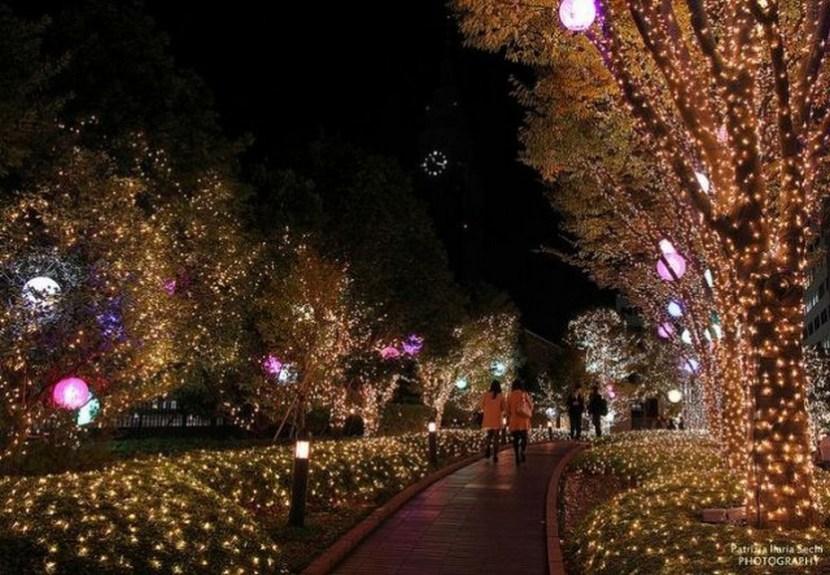 Christmas Lights in Tokyo