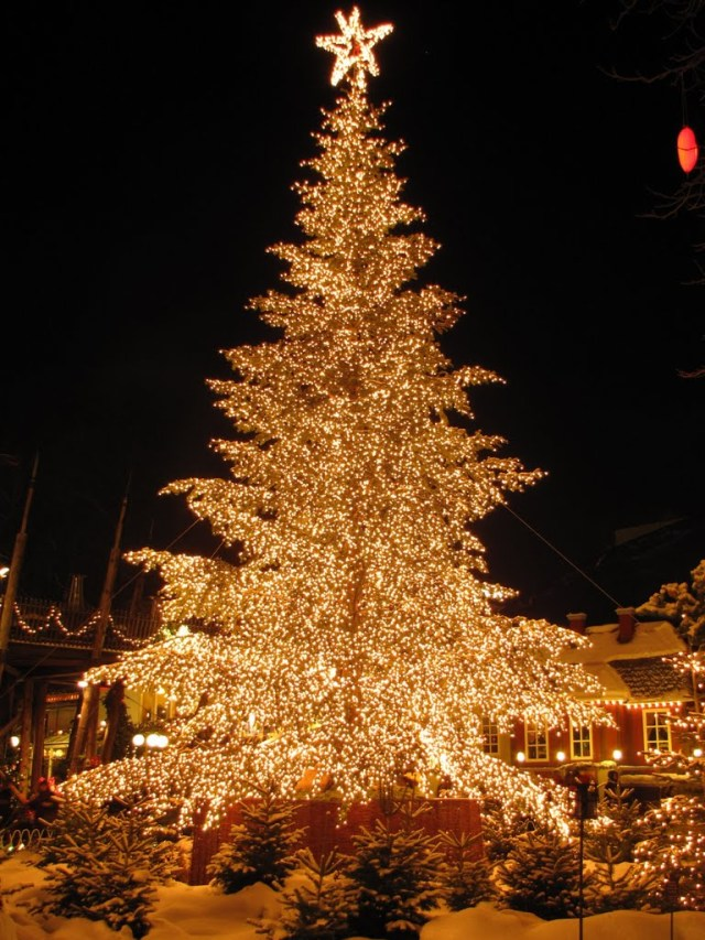 christmas-tree-tivoli-by-night-copenhagen-denmark