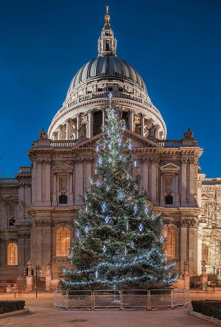 Christmas tree, St Pauls Cathedral in London
