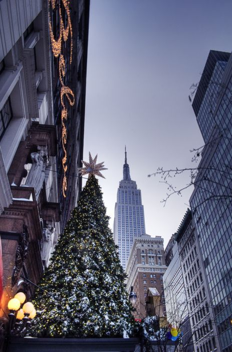 My personal dream is to go here for Christmas one year in good old NYC – Holiday Season in Harold Square with Empire State looking on, New York City