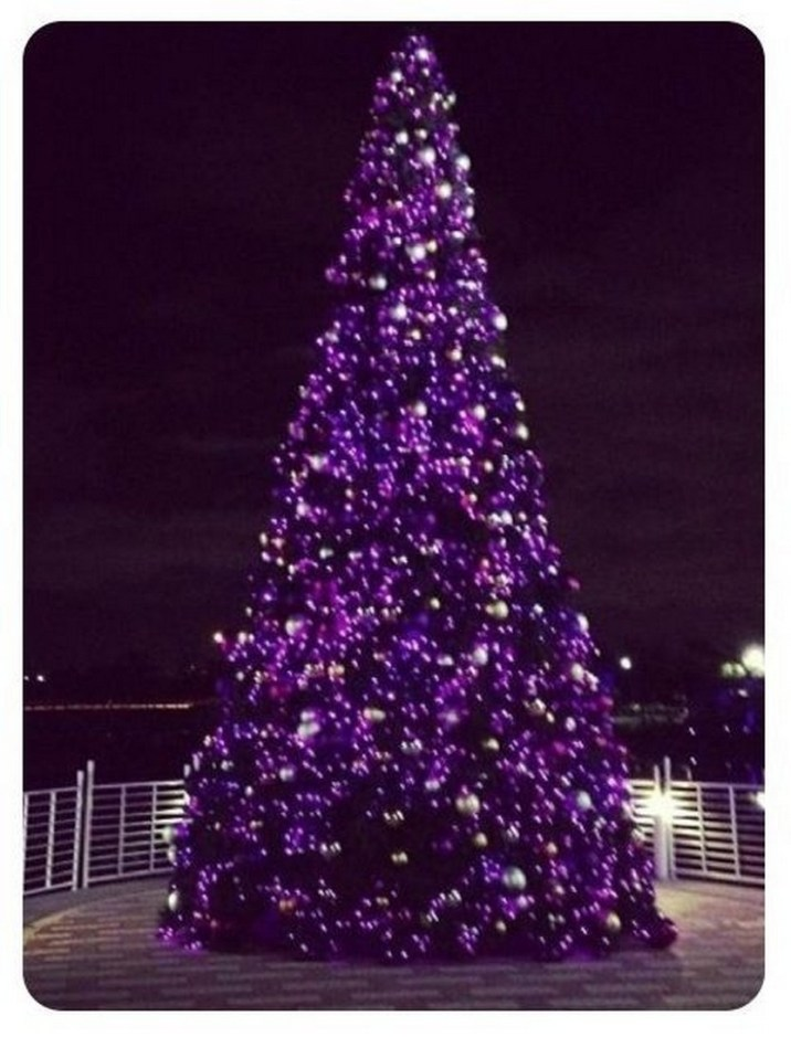 Purple Christmas Tree.Purple Christmas Trees Christmas Photos
