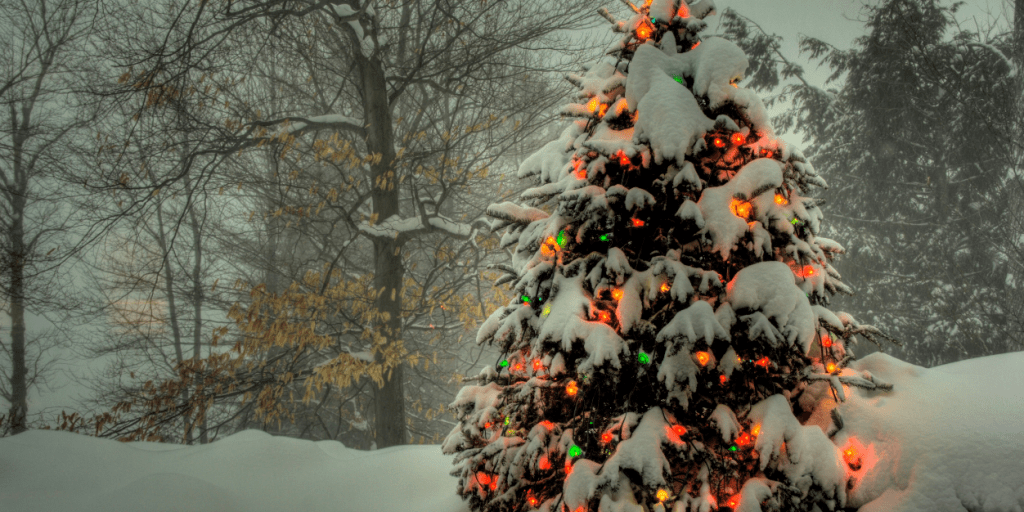 Why is Christmas? An autumn Christmas To Enjoy