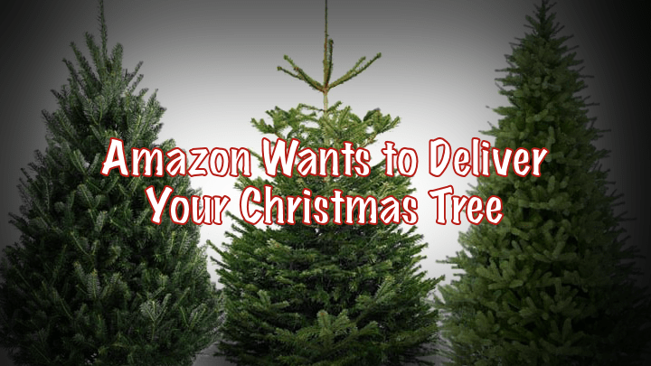 Amazon Targets Christmas Trees