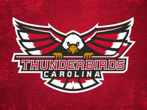 thunderbirds_dribbble_mockup_small