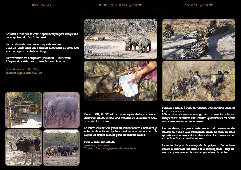 Brochure Hoedspruit Endangered Species Centre