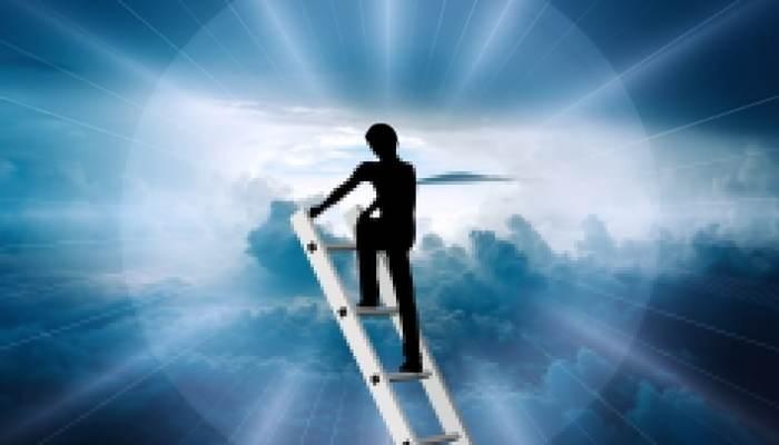 N'ayez Pas Peur De L'échec Et Volez Jusqu'à La Réussite