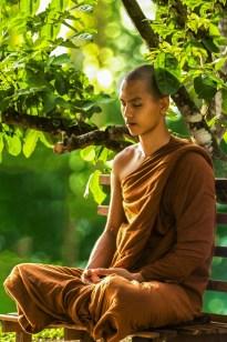 moine zen en méditation